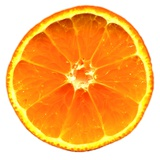 Half a Mandarin Orange Photographic Print by Steven Morris