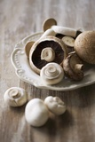 Chestnut Mushrooms and White Button Mushrooms Photographic Print by Dirk Pieters