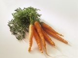 Fresh Carrots with Tops Photographic Print by Amos Schliack