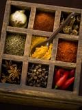 Assorted Spices in Type Case Fotografisk tryk af Greg Elms