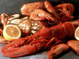 Lobster, Shrimp and Crab Fotografisk tryk af Steven Morris