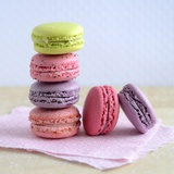 Colored Macaroons on a Platter Photographic Print by Sonia Chatelain
