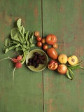 Radishes, Blackberries, Tomatoes and Nectarines Photographic Print by Louise Lister