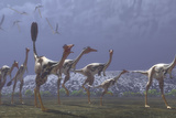 Herd of Mononykus Followed by a Flock of Pteranodons Prints by  Stocktrek Images