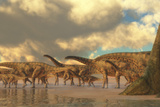 A Herd of Spinosphorosaurus Poster by  Stocktrek Images