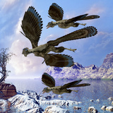 Archaeopteryx Birds Fly Near a Shoreline on a Cloudy Prehistoric Day Prints by  Stocktrek Images