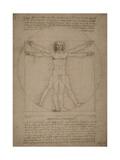 Leonardo Da Vinci's Vitruvian Man, Circa 1490 Reprodukcje autor Stocktrek Images
