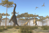 A Brachiosaurus Herd Grazing on Treetops Posters by  Stocktrek Images