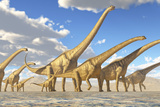 A Herd of Sauroposeidon Dinosaurs Posters by  Stocktrek Images