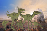 A Family of Juravenator Dinosaurs Cross a Desert Area Hunting for Prey Posters by  Stocktrek Images