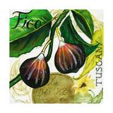 Tuscan Sun Figs Posters by Jennifer Garant