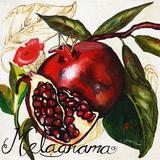 Tuscan Sun Pomegranate Wood Print by Jennifer Garant