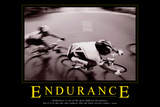 Endurance Posters