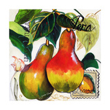 Tuscan Sun Pears Posters by Jennifer Garant