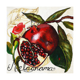Tuscan Sun Pomegranate Art by Jennifer Garant