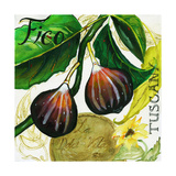 Tuscan Sun Figs Giclee Print by Jennifer Garant