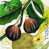 Tuscan Sun Figs Wood Print by Jennifer Garant