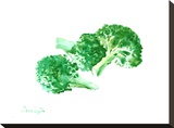 Broccoli Stretched Canvas Print by Suren Nersisyan
