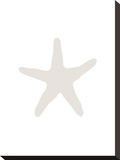 Beige 2 Starfish Stretched Canvas Print by  Jetty Printables