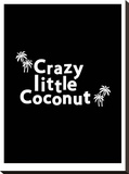 Crazy Little Coconut on Black Stretched Canvas Print by Ashlee Rae