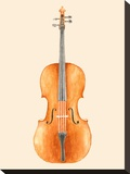 Cello Stretched Canvas Print by Florent Bodart