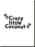 Crazy Little Coconut Stretched Canvas Print by Ashlee Rae