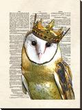Owl King Stretched Canvas Print by Matt Dinniman