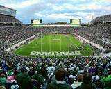 Spartan Stadium Michigan State Spartans 2015 Photo