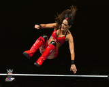 Brie Bella 2015 Action Photo