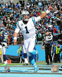 Cam Newton 2015 NFC Divisional Playoff Game Photo