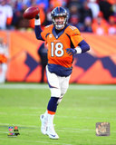 Peyton Manning 2015 AFC Divisional Playoff Game Photo