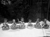 Naked Children (12-23 Months) Siting in Wash Bowls Photographic Print