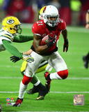 Patrick Peterson 2015 NFC Divisional Playoff Game Photo