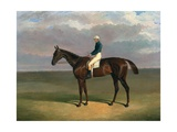 'Margrave' with James Robinson up by John Frederick Herring Giclee Print