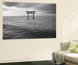 Biwa Japan Wall Mural by Art Wolfe