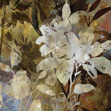 Floral Eclipse IV Giclee Print by Paul Duncan