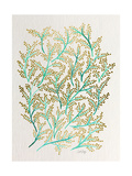 Branches in Turquoise and Gold Giclee Print by Cat Coquillette