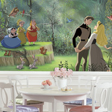 Disney Princess Sleeping Beauty XL Chair Rail Prepasted Mural Wall Mural