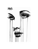 Untitled Face 4 Prints by Loui Jover