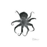 Black Octopus Premium Giclee Print by Albert Koetsier