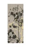 Grasses 2 Gray Prints by Diane Stimson