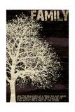 Family Tree Premium Giclee Print by Diane Stimson