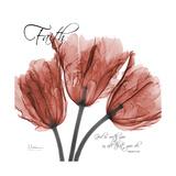 Faith Tulips Premium Giclee Print by Albert Koetsier