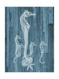 Seahorse Wood Premium Giclee Print by Albert Koetsier