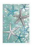 Starfish Bubbles Premium Giclee Print by Diane Stimson