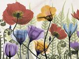 Flowers and Ferns 1 Premium Giclee Print by Albert Koetsier