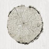 Woodland Years II Prints by Sue Schlabach
