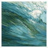 Fluid Motion Lámina por Margaret Juul