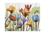 Flowers and Ferns 2 Premium Giclee Print by Albert Koetsier