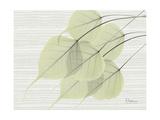 Grasscloth BoTree Premium Giclee Print by Albert Koetsier
